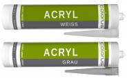 Colorus Acryl PLUS 310ml